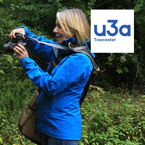 u3a website design and rebranding